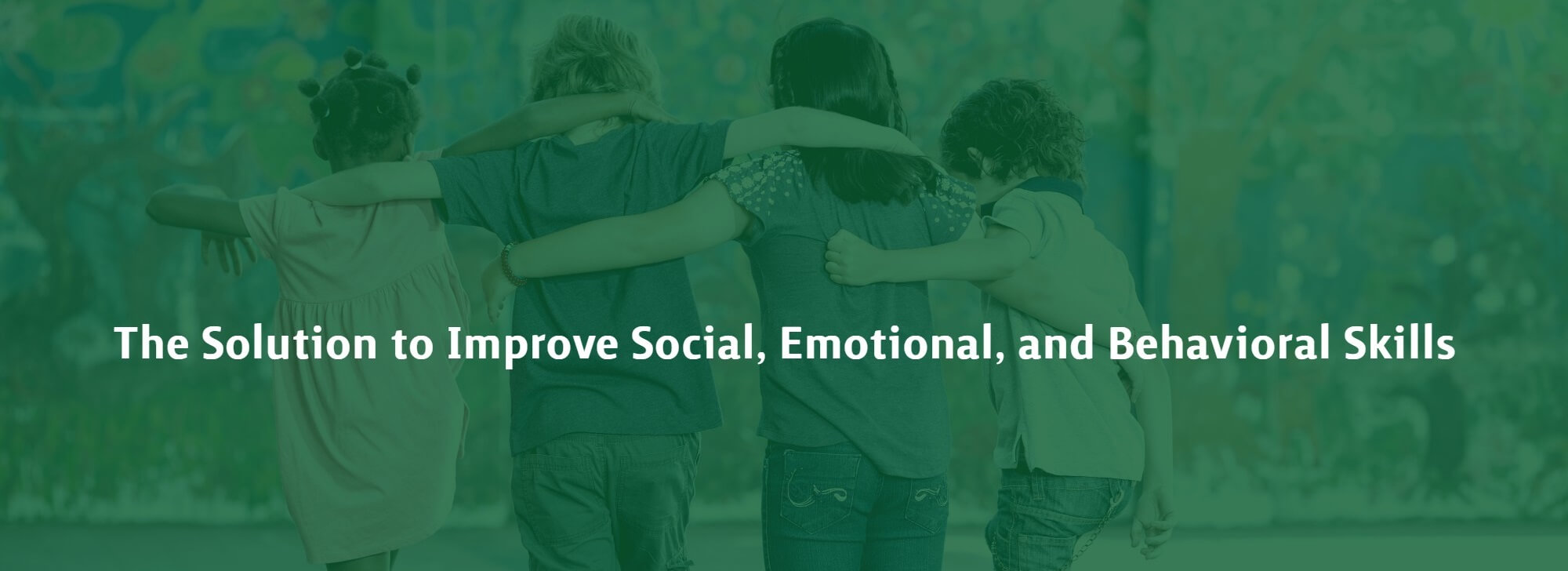 Social Emotional Interventions
